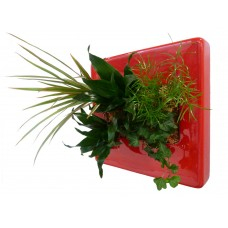 Ceramic - Carre Vegetal