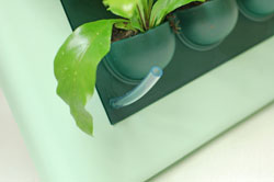 полив растений Живая стена